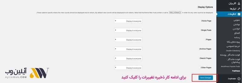 display options - افزونه wp postviews و نمایش آمار بازدید از مطالب در وردپرس