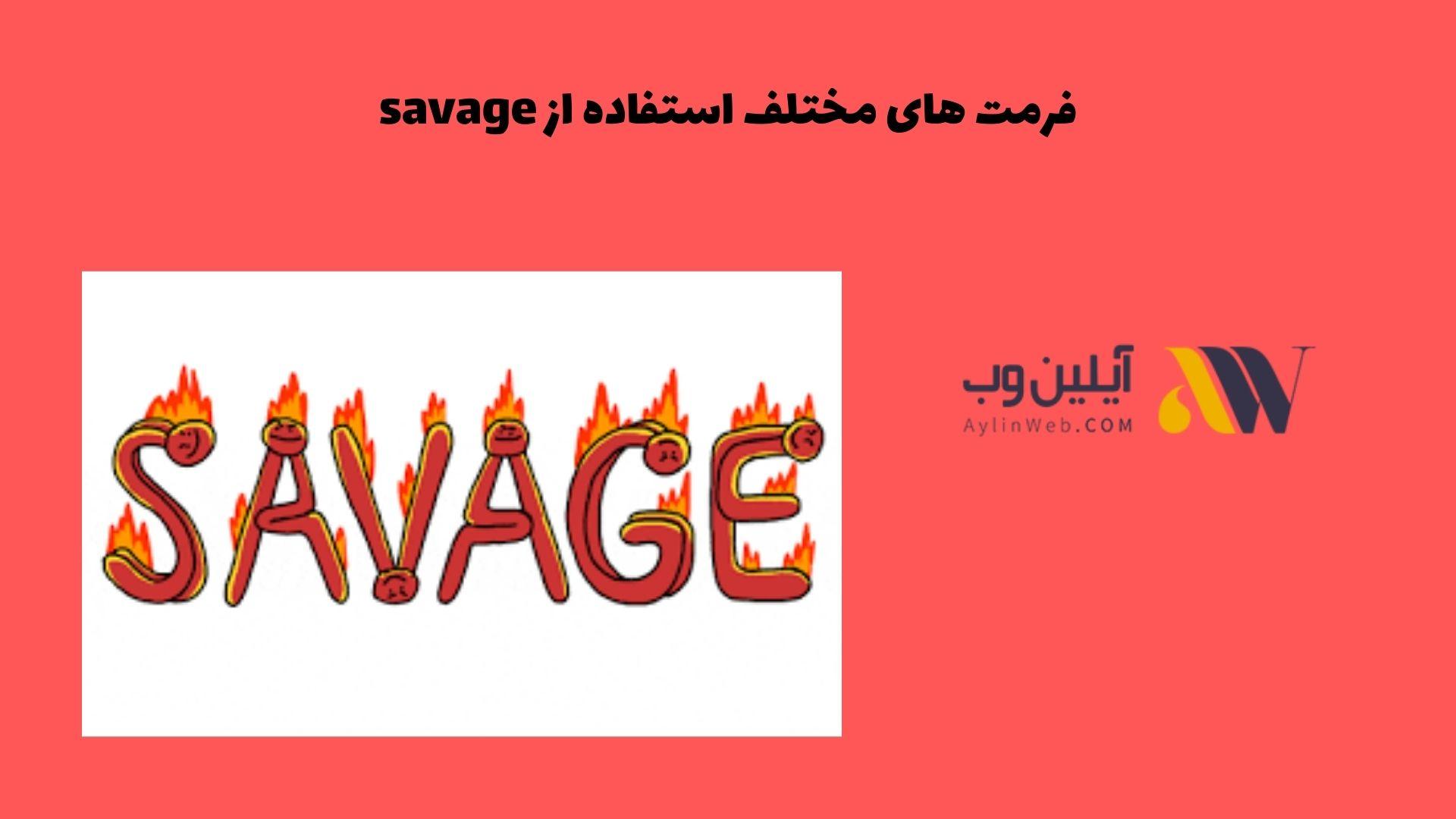 فرمت های مختلف استفاده از savage